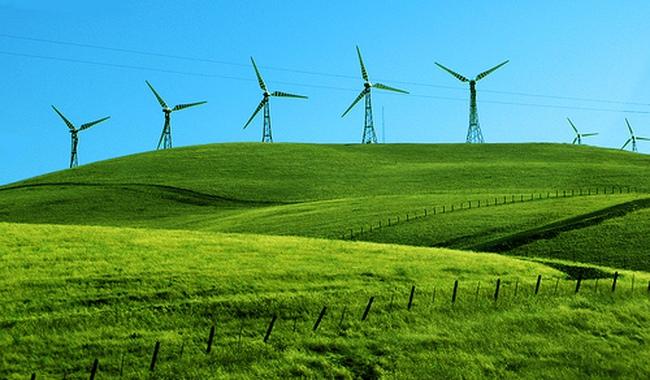 Lợi nhuận cao từ đầu tư điện gió