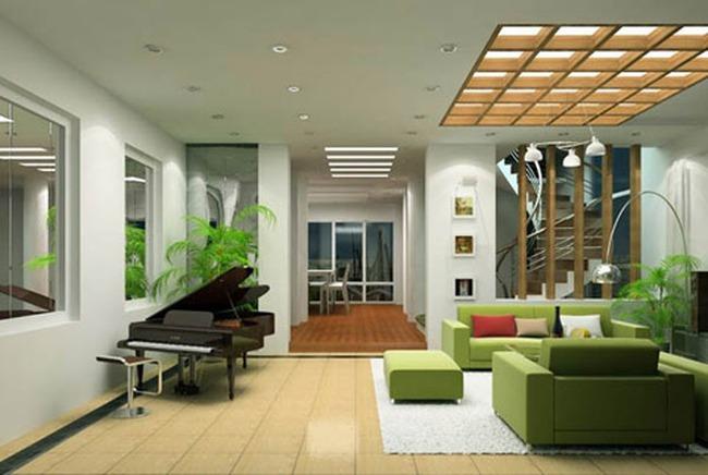 Phong thủy cho cây xanh trong nhà ở