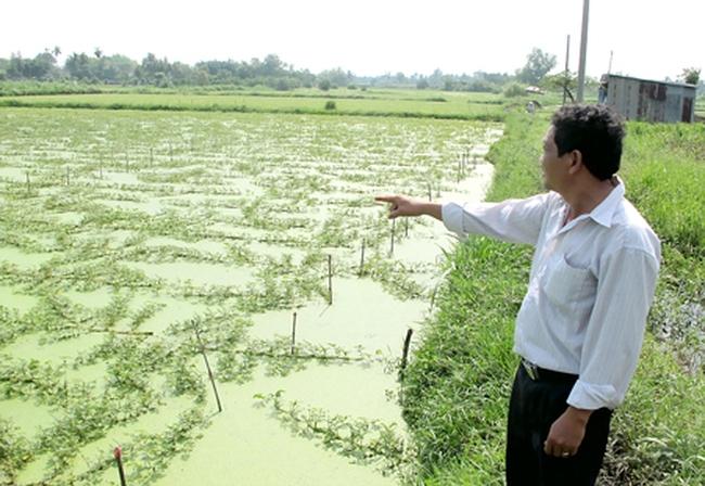 TPHCM: Bồi thường cho người không có đất