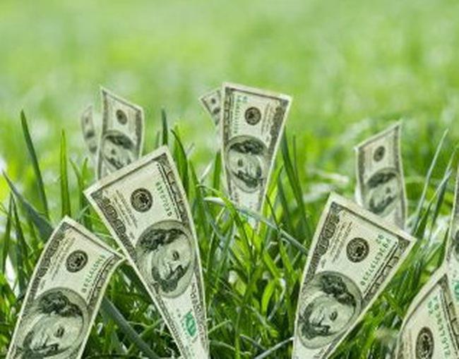 Lượng tiền rút khỏi các quỹ đầu tư chứng khoán cao kỷ lục