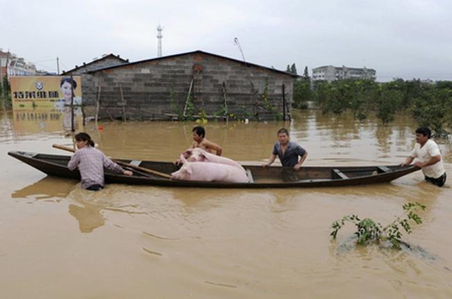 Các nước lớn châu Á dễ tổn thương nhất vì thiên tai