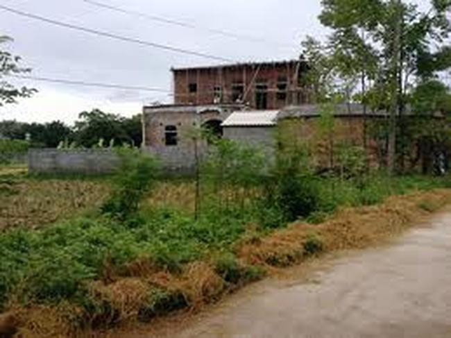 Giải tỏa 58 trường hợp vi phạm đất nông nghiệp tại quận Hà Đông