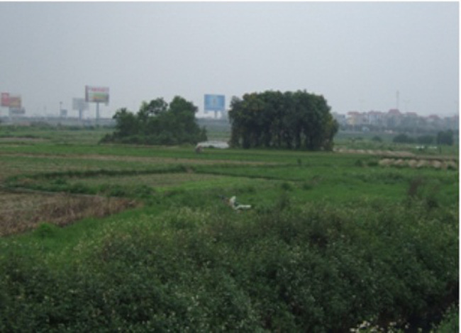 Bắc Ninh ép dân nhận đến bù khi thu hồi đất cho dự án Công viên Hồ điều hòa