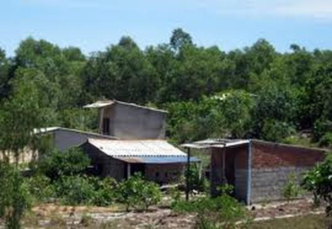 Xây nhà trái phép trong khu sinh thái bị phạt tới 500 triệu đồng