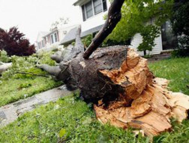 10 trận bão gây thiệt hại tài chính lớn nhất trong lịch sử nước Mỹ