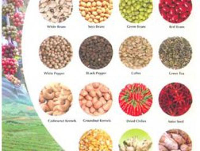 Xuất siêu nông sản vượt 9 tỷ USD: Chưa hẳn mừng!