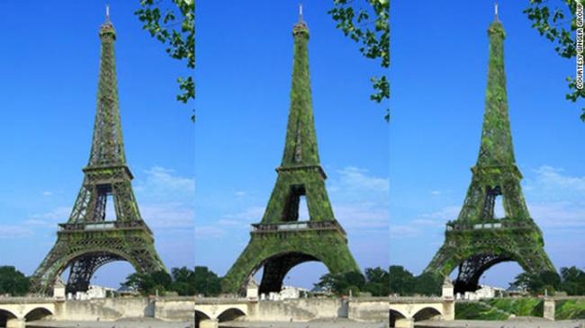 Tháp Eiffel có thể trở thành cây lớn nhất thế giới