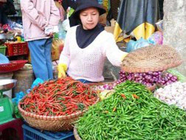 Giá ớt tươi tăng vọt lên 70.000 đồng/kg