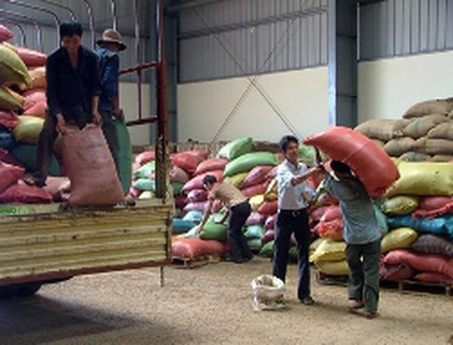 Mức cộng 70 USD/tấn cho cà phê xuất khẩu Việt Nam