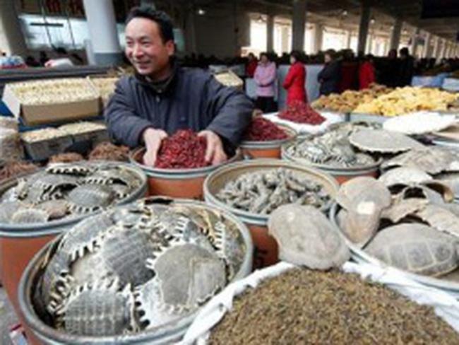 Người Trung Quốc đổ xô buôn thuốc bắc