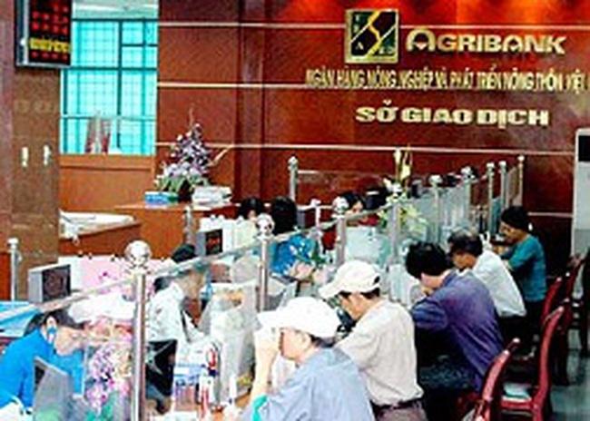 Agribank được chỉ định phục vụ dự án của World Bank