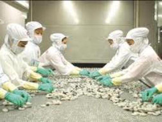 MPC: 2 tháng đầu năm 2012 kim ngạch xuất khẩu chỉ bằng 23,34% cùng kỳ