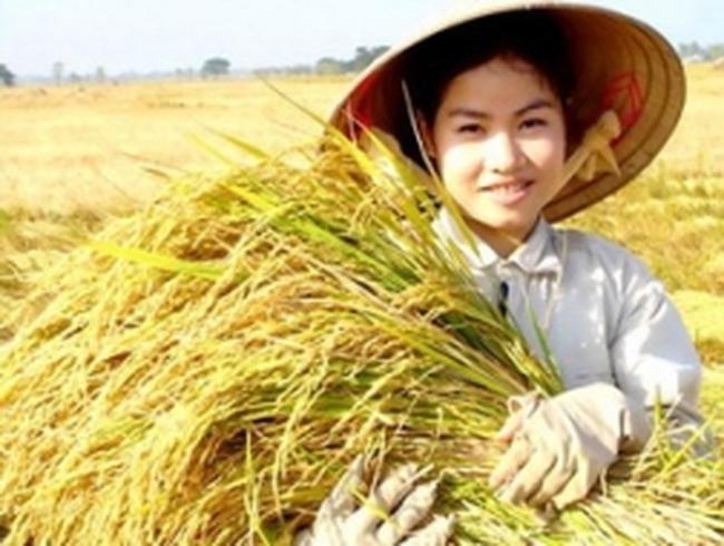 Đại biểu của 40 quốc gia dự Hội nghị FAO ở Hà Nội