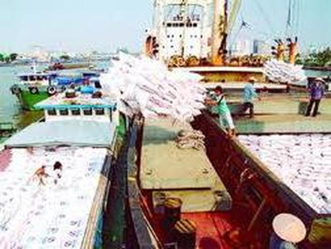 Việt Nam bước vào thị trường xuất khẩu gạo thơm