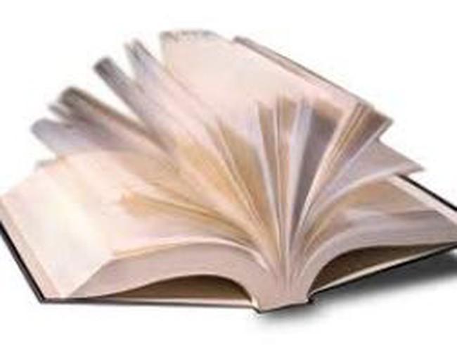 EFI: Mức cổ tức năm 2012 dự kiến đạt 11%