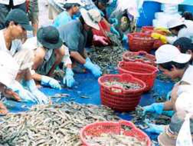 MPC: Qũy đầu tư Việt Nam đăng ký mua 500.000 CP, bán 300.000 CP