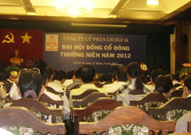 LCG: Năm 2012 kế hoạch lợi nhuận 0 đồng