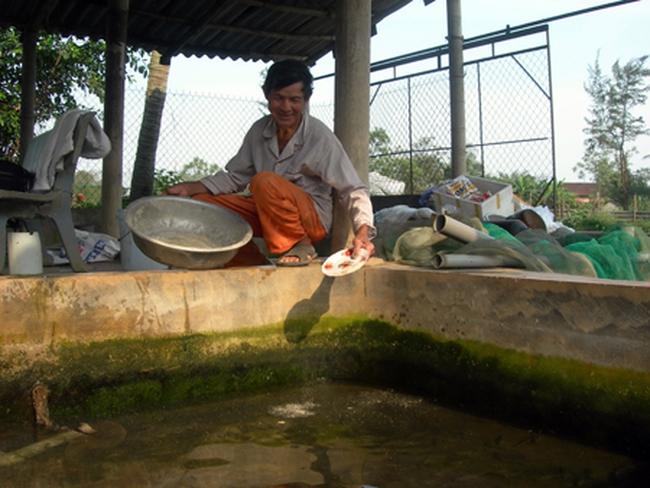 Thu tiền tỷ mỗi năm...bằng nghề nuôi cá giống