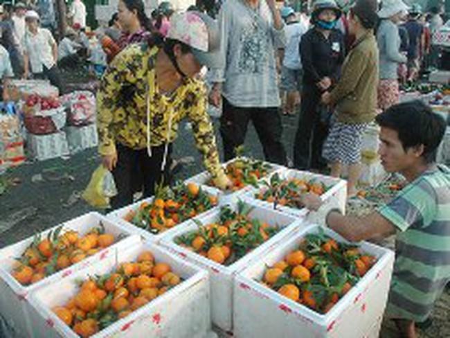 Hãi hùng trái cây tẩm hóa chất
