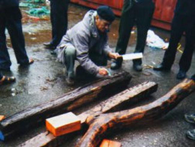Tranh cãi quanh vụ hải quan bắt xuất gỗ triệu đô