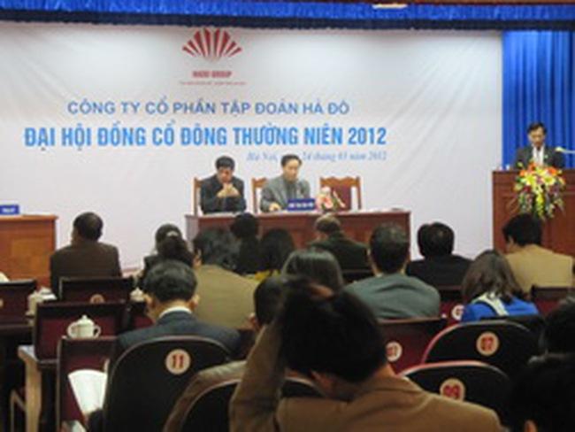 HDG: Năm 2012 doanh thu và lợi nhuận sẽ giảm