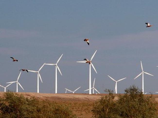 Trung Quốc dẫn đầu thế giới về năng lượng sức gió