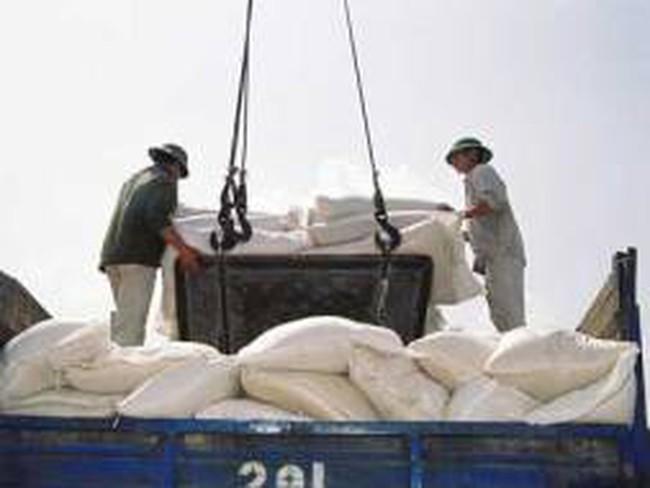 Mỗi ngày, DN nhập kho trên 40.000 tấn gạo tạm trữ