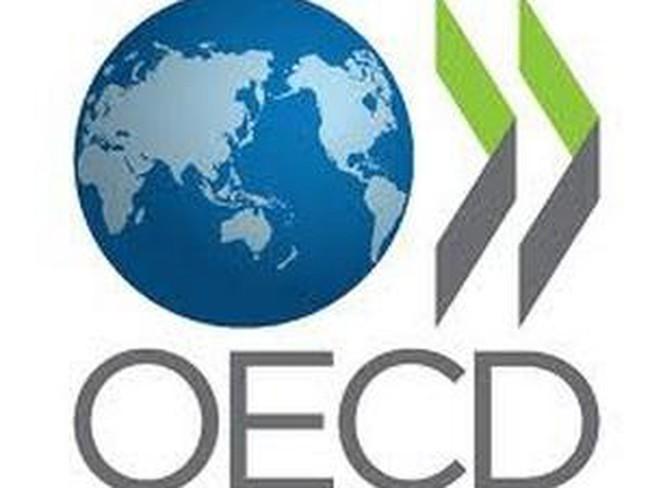 OECD: Canada, Mỹ dẫn đầu G7 về phục hồi kinh tế