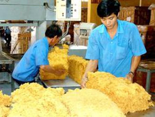 Giá cao su xuất khẩu chỉ bằng 50% giá thế giới