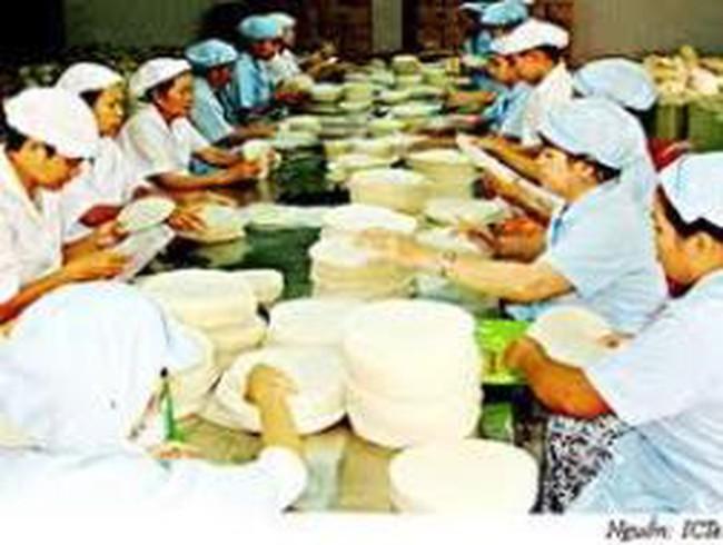 TP Hồ Chí Minh: Kinh tế tập thể tăng trưởng 11%