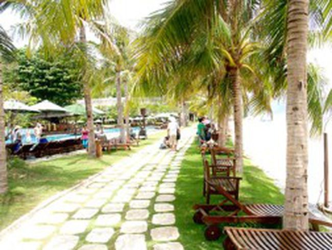 Hợp tác phát triển du lịch TPHCM - Lâm Đồng - Bình Thuận