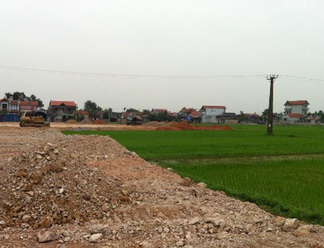 Hải Phòng: Tàn phá ruộng lúa nông dân, chủ đầu tư bị đình chỉ