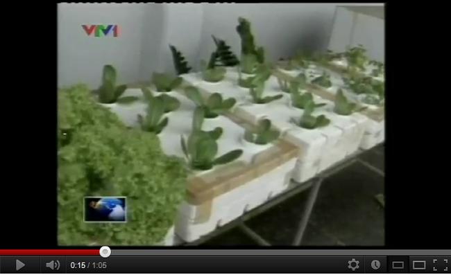 [Video] Philippin: Phương pháp giải quyết tình trạng giá lương thực tăng cao