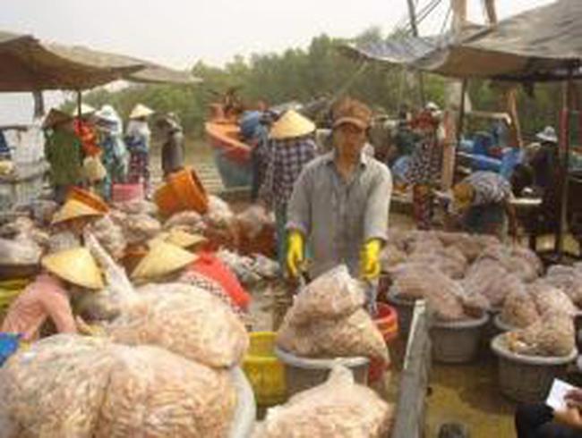 Xuất khẩu tôm chuyển hướng sang châu Á