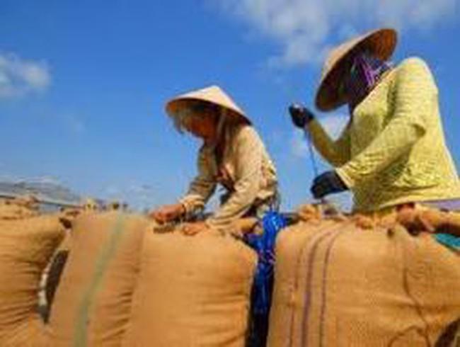 MCF: LNST quý I/2012 đạt 7,76 tỷ đồng
