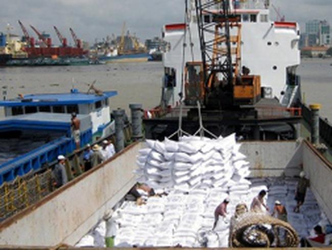 Gạo Việt vào Trung Quốc: Vừa xuất vừa lo