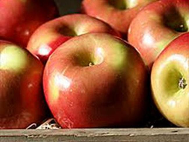 """Phát hiện táo """"bẩn"""" chứa hóa chất và vi khuẩn nguy hiểm"""