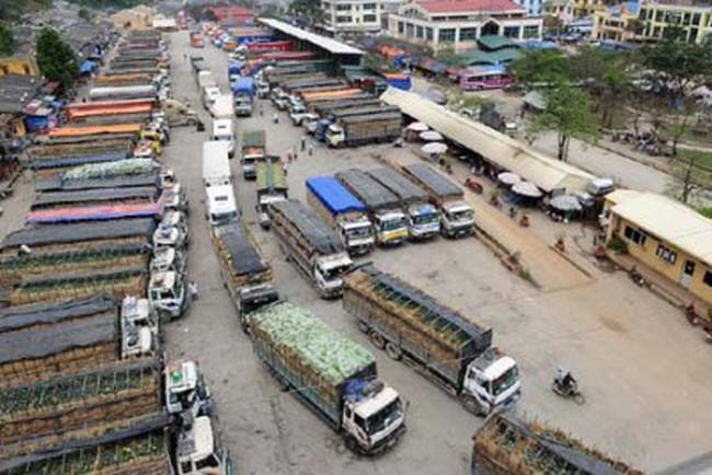 [Video] Hàng trăm xe tải chở hoa quả Việt Nam ách tắc tại cửa khẩu Tân Thanh