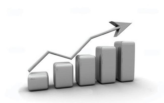 Nhìn lại kết quả kinh doanh của các cổ phiếu thuộc HNX30