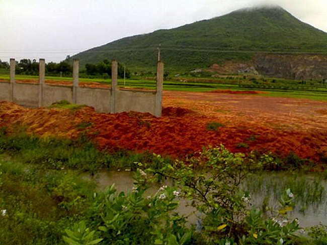 Bình Thuận không biết việc người Trung Quốc 'gom' đất?