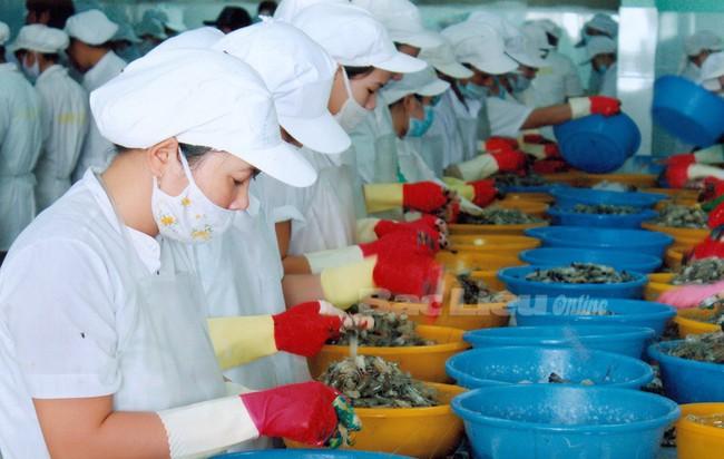 Thủy sản Bạc Liêu chuẩn bị phát hành 50 tỷ trái phiếu chuyển đổi cho các chủ nợ