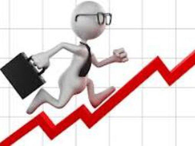 DQC: Xuất khẩu tăng cải thiện biên lợi nhuận, 6 tháng lãi ròng hơn 29 tỷ đồng