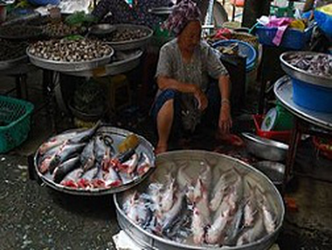 Nông sản Việt đối mặt nhiều khó khăn
