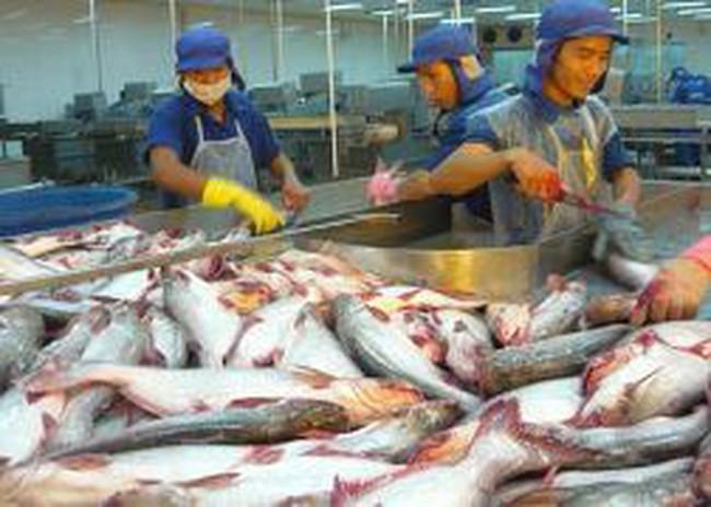 Nhật Bản tăng nhập khẩu cá tra từ Việt Nam