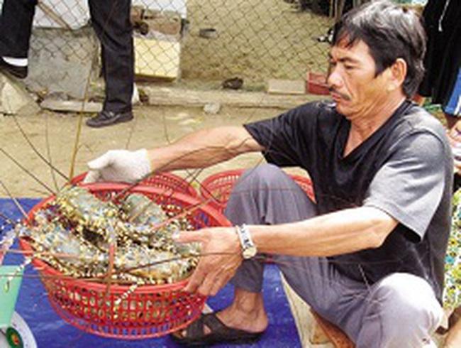 Lệ thuộc xuất khẩu tiểu ngạch, ngư dân bị ép giá
