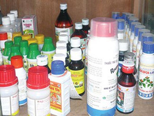 51% lượng thuốc trừ sâu nhập khẩu từ Trung Quốc