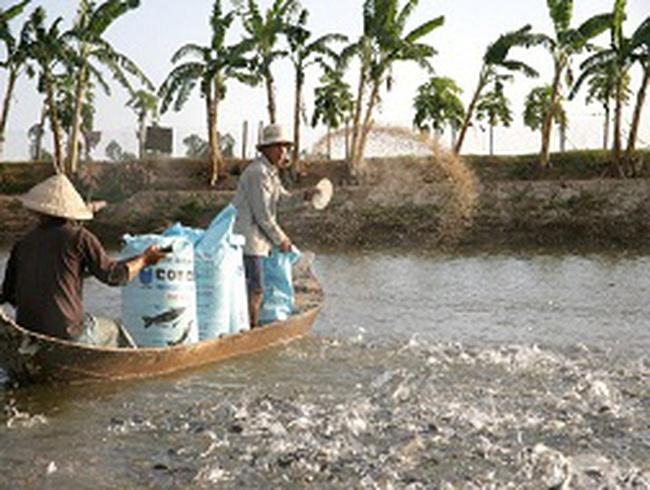 Sẽ tăng 30% phí trong lĩnh vực thủy sản