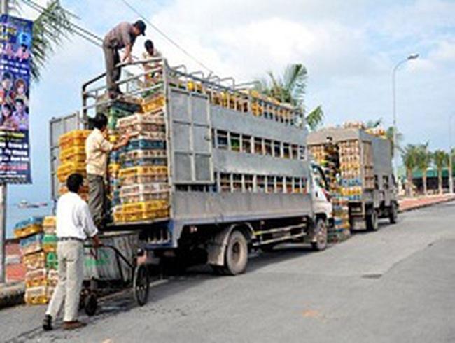 Cấm vận chuyển gia cầm từ Campuchia, Trung Quốc vào Việt Nam