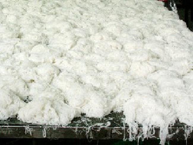 Xử lý thêm 2 cơ sở sản xuất bún, bánh phở chứa hóa chất