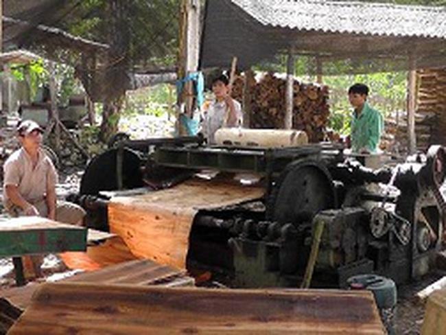 Lao đao nghề gỗ bóc